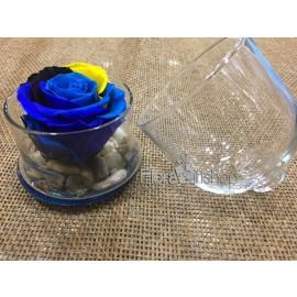 Forever Roses - Plate Vase