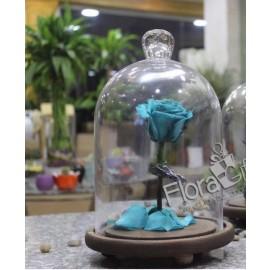 Forever Roses - Medium Vase