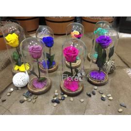 Forever Roses - Small Vase II