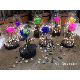 Forever Roses - Lighting Vase