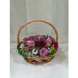 Purple Basket Flowers