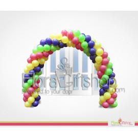 Colored Entrance Balloons