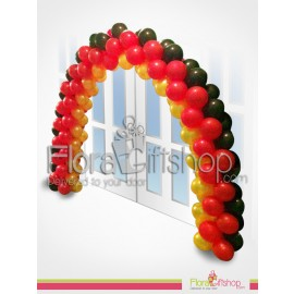 Stylish Colored Entrance Balloons