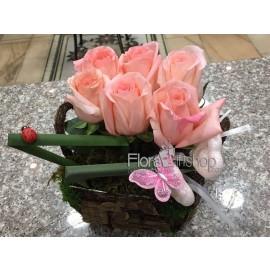 Shy Cheeks Roses